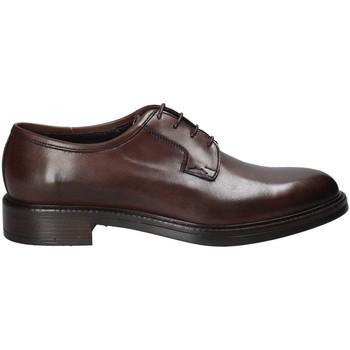 Obuća Muškarci  Derby cipele Rogers 750_2 Smeđa