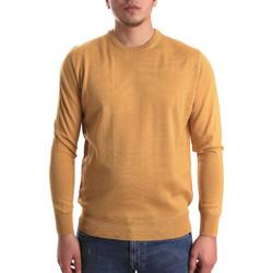 Odjeća Muškarci  Puloveri Navigare NV1100530 Žuta boja