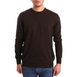 Odjeća Muškarci  Puloveri Navigare NV11005AD30 Smeđa