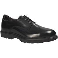 Obuća Muškarci  Derby cipele Exton 1680 Crno