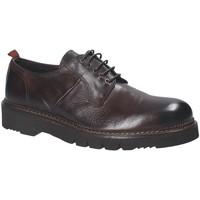Obuća Muškarci  Derby cipele Exton 390 Smeđa