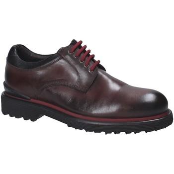 Obuća Muškarci  Derby cipele Exton 940 Smeđa