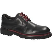 Obuća Muškarci  Derby cipele Exton 940 Crno