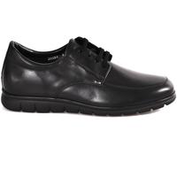 Obuća Muškarci  Derby cipele Soldini 20583 P Crno