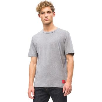 Odjeća Muškarci  Majice kratkih rukava Calvin Klein Jeans J30J309616 Siva