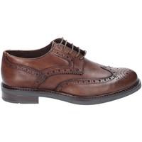 Obuća Muškarci  Derby cipele Rogers 3040 Smeđa