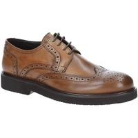 Obuća Muškarci  Derby cipele Exton 5446 Smeđa