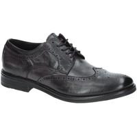 Obuća Muškarci  Derby cipele Exton 9550 Siva