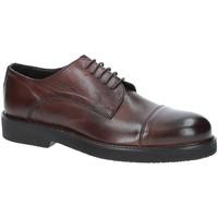 Obuća Muškarci  Derby cipele Exton 5413 Smeđa