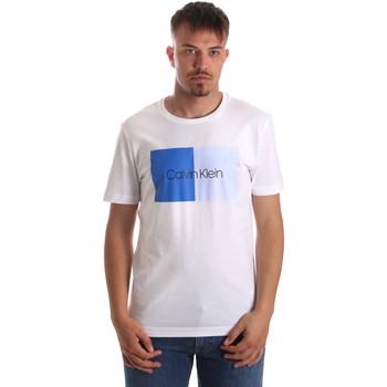Odjeća Muškarci  Majice kratkih rukava Calvin Klein Jeans K10K103497 Bijela