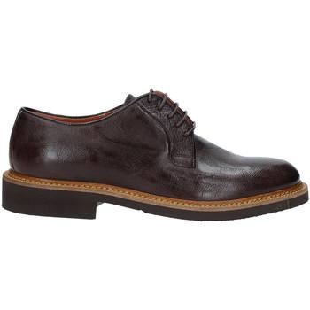 Obuća Muškarci  Derby cipele Rogers AM001 Smeđa