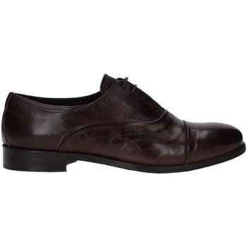 Obuća Muškarci  Derby cipele Rogers T0001 Smeđa