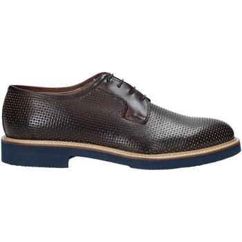 Obuća Muškarci  Derby cipele Rogers 1031_3 Smeđa