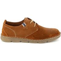 Obuća Muškarci  Derby cipele Grunland SC4527 Smeđa