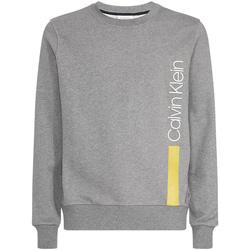 Odjeća Muškarci  Sportske majice Calvin Klein Jeans K10K103943 Siva