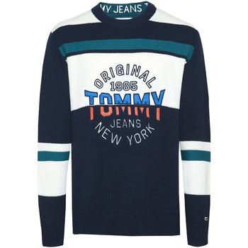 Odjeća Muškarci  Puloveri Tommy Hilfiger DM0DM06992 Plava