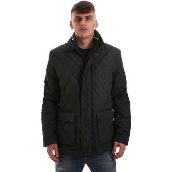 Odjeća Muškarci  Pernate jakne Navigare NV65008 Zelena