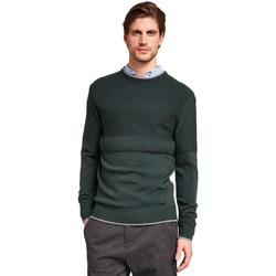 Odjeća Muškarci  Puloveri Gaudi 921BU53022 Zelena