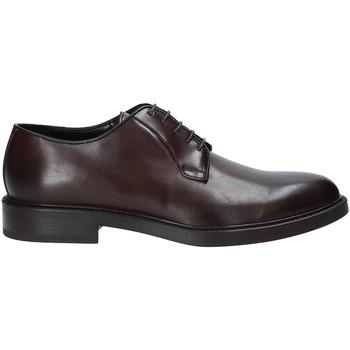 Obuća Muškarci  Derby cipele Rogers 1019_4 Smeđa