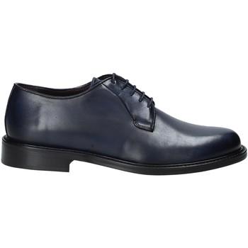 Obuća Muškarci  Derby cipele Rogers 4000_4 Plava