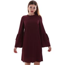 Odjeća Žene  Kratke haljine Gaudi 921BD15025 Crvena