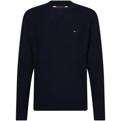 Odjeća Muškarci  Puloveri Tommy Hilfiger MW0MW13122 Plava
