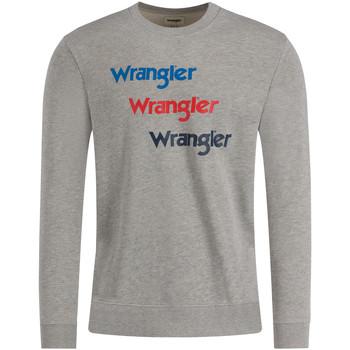 Odjeća Muškarci  Sportske majice Wrangler W6A5HAX37 Siva