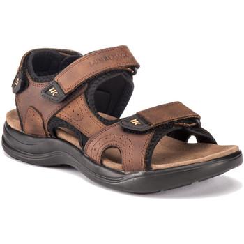 Obuća Muškarci  Sportske sandale Lumberjack SM30606 004 P95 Smeđa