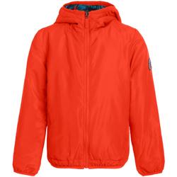 Odjeća Žene  Jakne Invicta 4442203/D Naranča