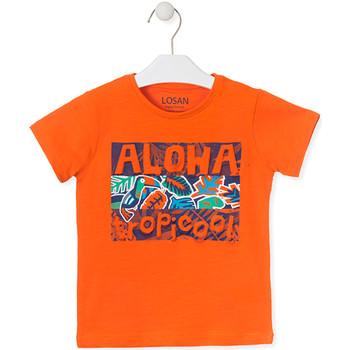 Odjeća Djeca Majice kratkih rukava Losan 015-1025AL Naranča