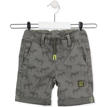 Odjeća Djeca Bermude i kratke hlače Losan 015-9006AL Zelena