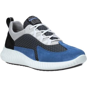 Obuća Muškarci  Niske tenisice IgI&CO 5123611 Plava