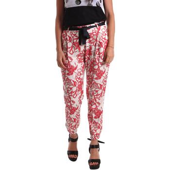 Odjeća Žene  Chino hlačei hlače mrkva kroja Café Noir JP244 Crvena