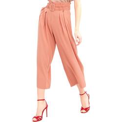 Odjeća Žene  Lagane hlače / Šalvare Fracomina FR20SM644 Ružičasta