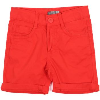 Odjeća Djeca Bermude i kratke hlače Losan 015-9655AL Crvena