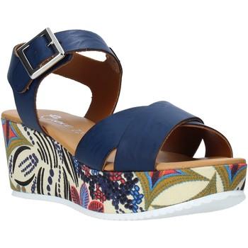 Obuća Žene  Sandale i polusandale Grace Shoes 12 Plava