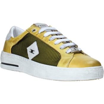 Obuća Muškarci  Niske tenisice Exton 177 Žuta boja