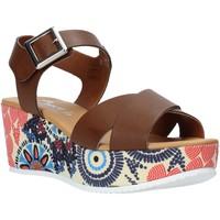 Obuća Žene  Sandale i polusandale Grace Shoes 12 Smeđa