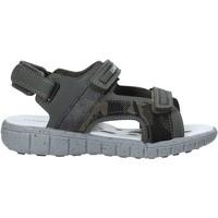 Obuća Djeca Sportske sandale Lumberjack SB28206 006 S01 Zelena