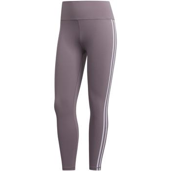 Odjeća Žene  Tajice adidas Originals FL2256 Ružičasta