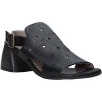 Obuća Žene  Sandale i polusandale Bueno Shoes 9L3902 Crno