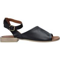 Obuća Žene  Sandale i polusandale Bueno Shoes Q5602 Crno