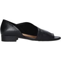 Obuća Žene  Sandale i polusandale Bueno Shoes N5112 Crno