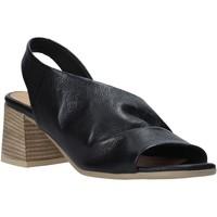 Obuća Žene  Sandale i polusandale Bueno Shoes 9N1300 Crno