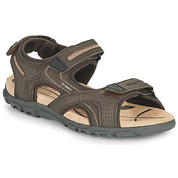 Obuća Muškarci  Sportske sandale Geox UOMO SANDAL STRADA D Smeđa / Bež