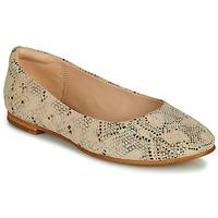Obuća Žene  Balerinke i Mary Jane cipele Clarks GRACE PIPER Bež / Python