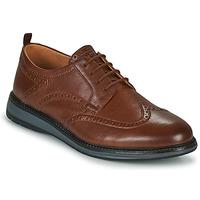 Obuća Muškarci  Derby cipele Clarks CHANTRY WING Smeđa