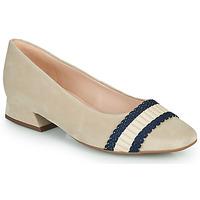 Obuća Žene  Balerinke i Mary Jane cipele Peter Kaiser ZAPOPAN Bež