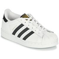 Obuća Djeca Niske tenisice adidas Originals SUPERSTAR C Bijela / Crna