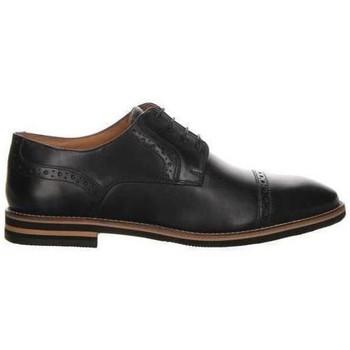 Obuća Muškarci  Derby cipele Salamander Vasco Flats Black